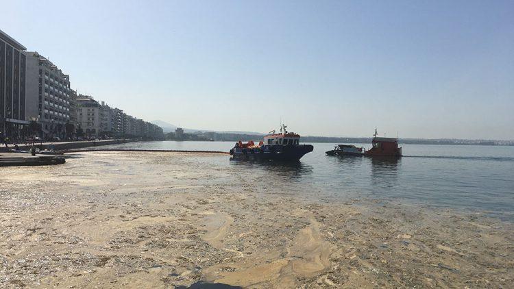 Αντιμετώπιση του φαινομένου εμφάνισης Φυτοπλαγκτόν στον Θερμαϊκό Κόλπο της Θεσσαλονίκης